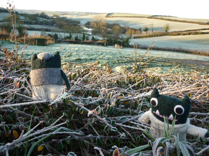 A Wintry Climb, with Paddy and Plunkett - CrawCrafts Beasties