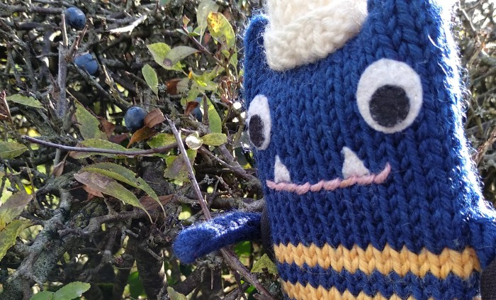 Sloes Featured - Foraging - CrawCrafts Beasties