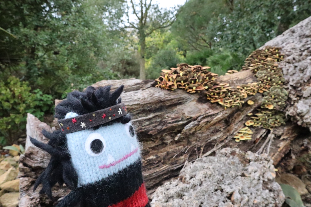 Garcia Beastie and Autumnal Fungus - CrawCrafts Beasties