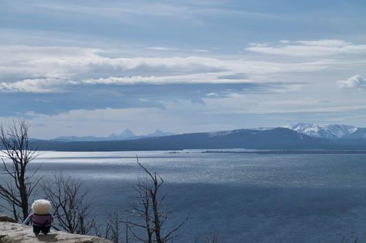 Yellowstone Lake - R Crawford/CrawCrafts Beasties