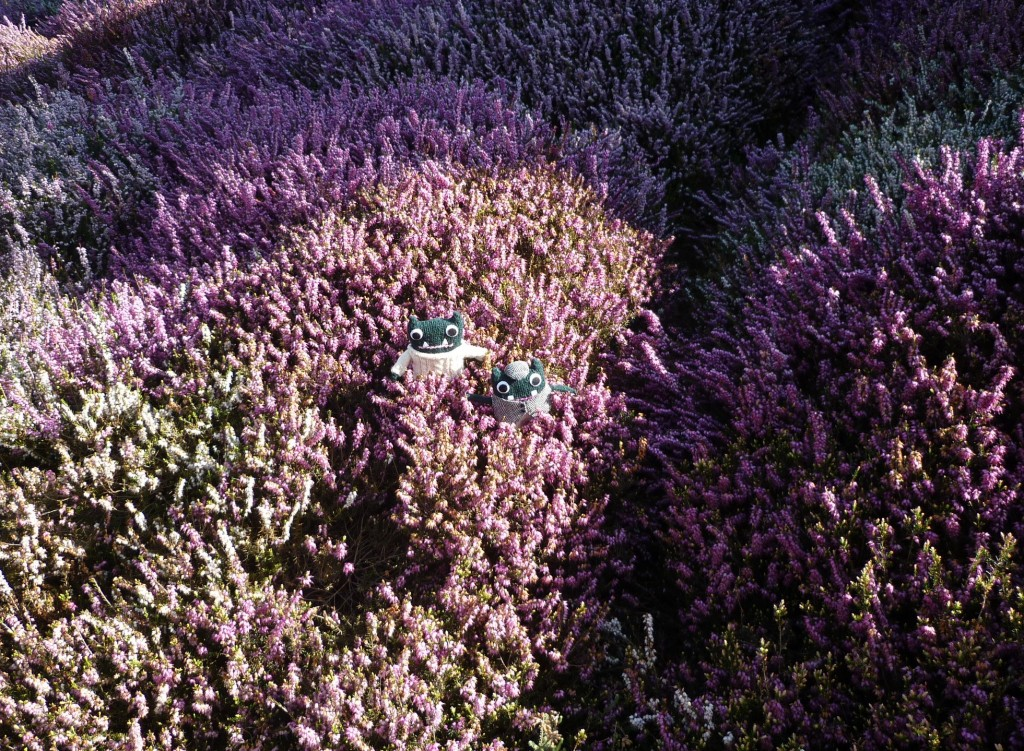 The Heather Bank at the Eden Project - H Crawford/CrawCrafts Beasties