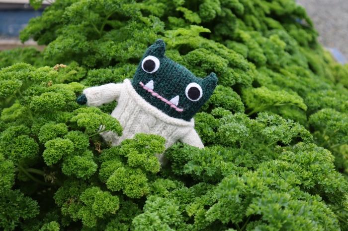 Paddy in the Parsley - Vegetable Garden - CrawCrafts Beasties