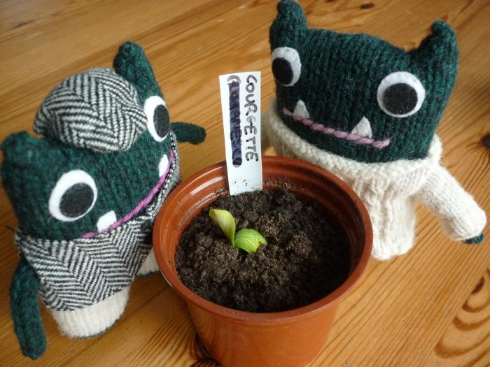 Courgette Plant - Growing Veg - CrawCrafts Beasties