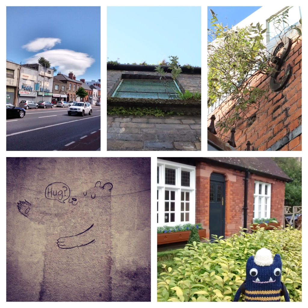 City Streets - Outdoors in Dublin - CrawCrafts Beasties