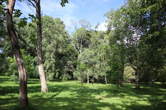 Arboretum at the National Botanic Gardens - CrawCrafts Beasties
