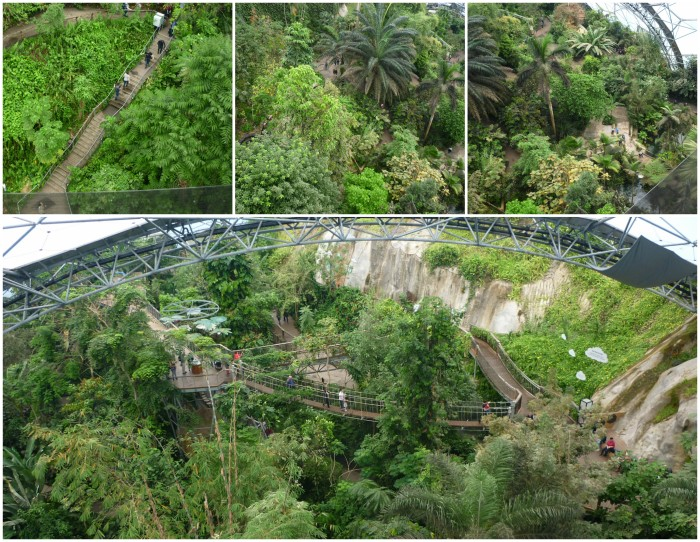 View from the Top - Rainforest Biome, Eden Project - H Crawford/CrawCrafts Beasties