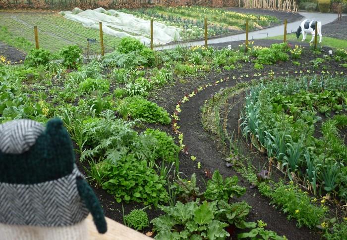 Plunkett Enjoys the Eden Vegetable Garden - H Crawford/CrawCrafts Beasties