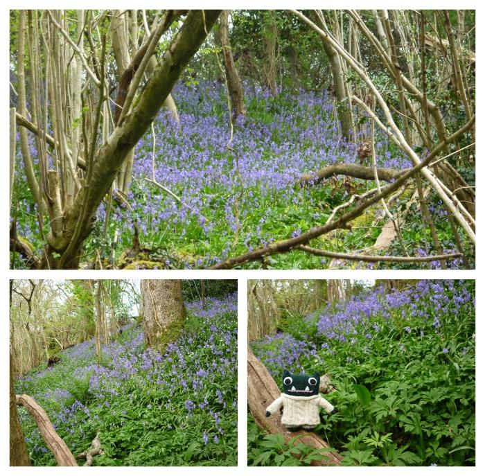 Bluebells Galore - Paddy and Plunkett in Galgorm Wood - CrawCrafts Beasties