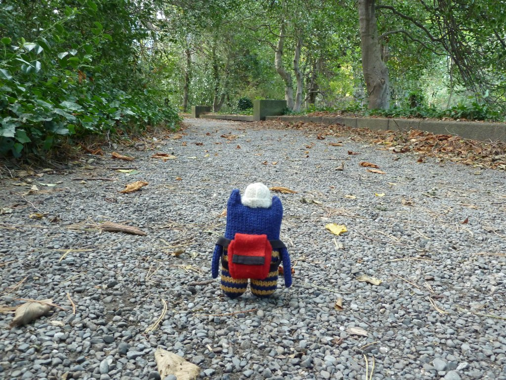 A quiet path in Iveagh Gardens - CrawCrafts Beasties
