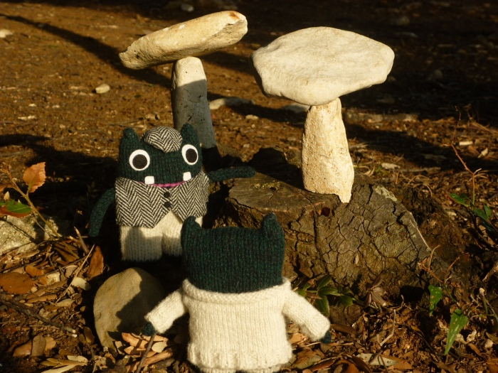 Plunkett and the Enchanted Stony Toadstools - H Crawford/CrawCrafts Beasties