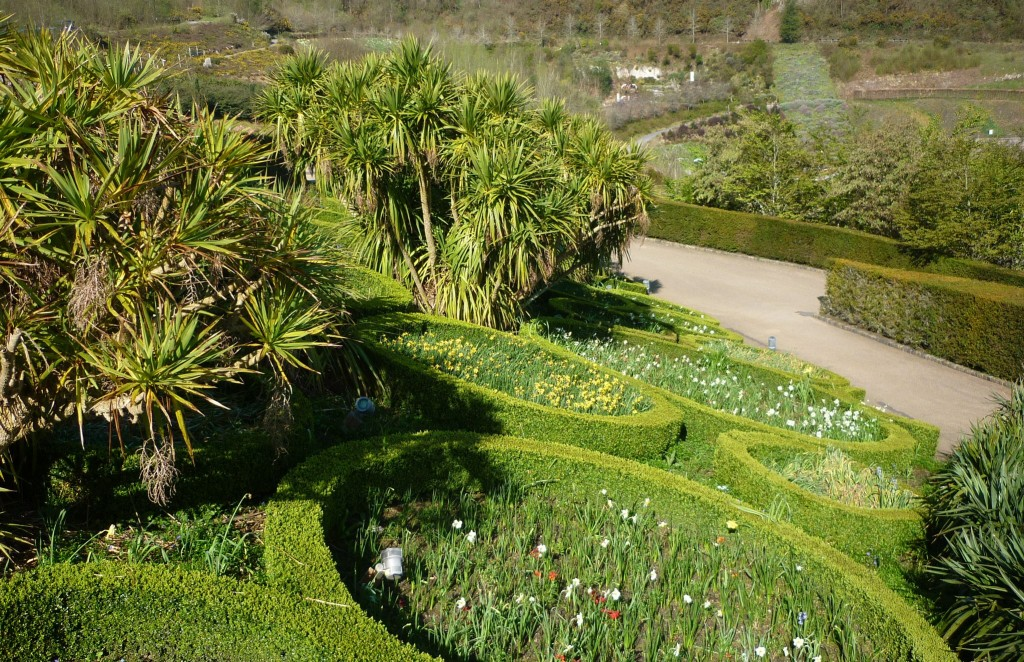 Wild Flower Beds at the Eden Project - H Crawfor/CrawCrafts Beasties