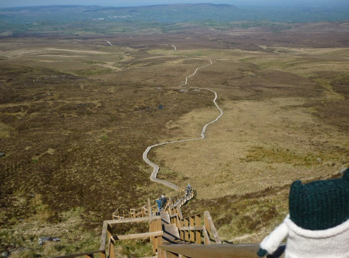 The View From Cuilcagh Mountain - H Crawford/CrawCrafts Beasties