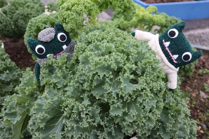 Kale! Vegetable Garden - CrawCrafts Beasties