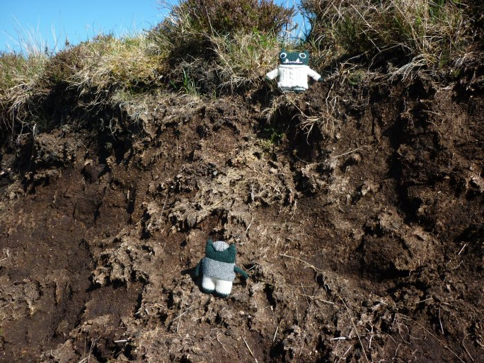 Paddy and Plunkett Check Out the Peat Bog - H Crawford/CrawCrafts Beasties