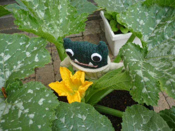 Courgette Flower - Harvest Time - H Crawford/CrawCrafts Beasties