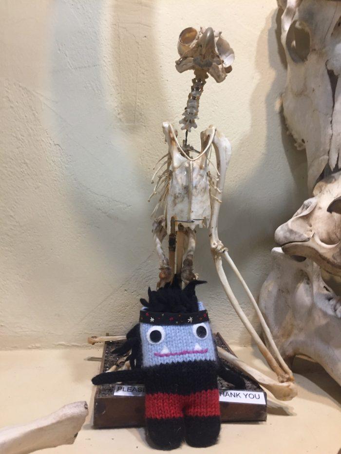 Garcia Beastie at the Natural History Museum - S Allen/CrawCrafts Beasties