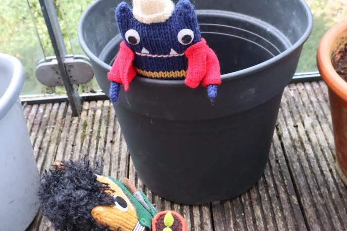 A New(ish) Pot for the Balcony Garden - CrawCrafts Beasties