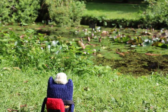 Explorer Beastie at the Lily Pond - CrawCrafts Beasties