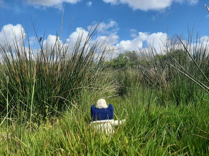 In the long grass - Springtime - CrawCrafts Beasties