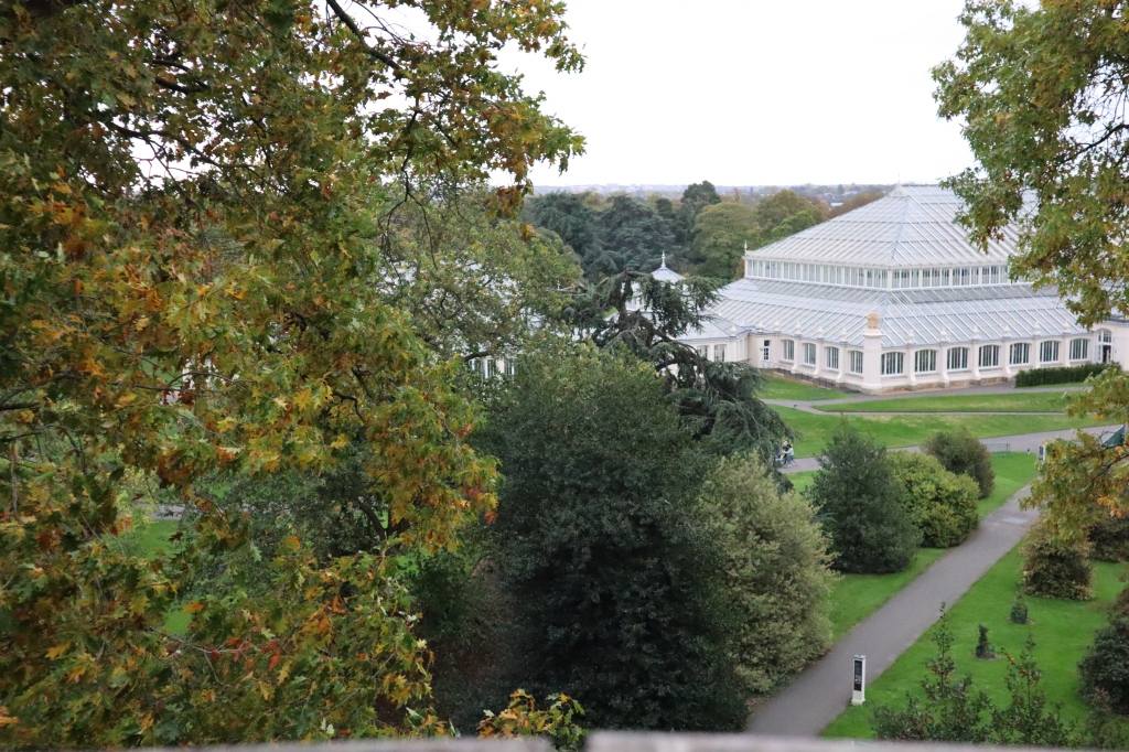The Temperate House from the Treetops - CrawCrafts Beasties