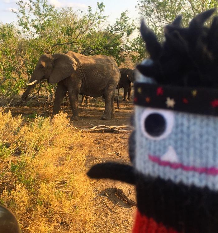 Elephants! And a photobombing Beastie - S Allen/CrawCrafts Beasties