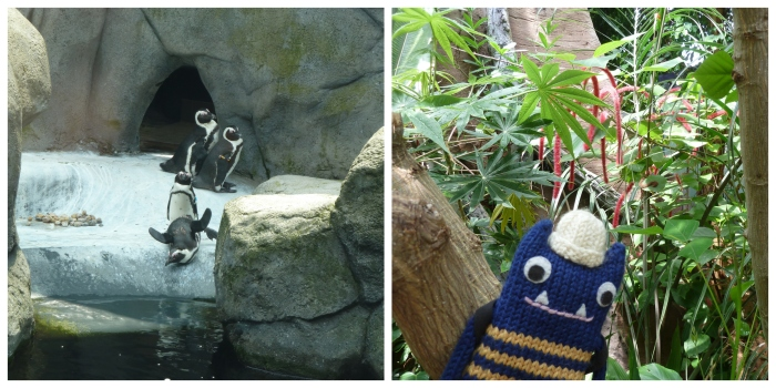 Penguins and the Tropical Forest - Aquazoo - CrawCrafts Beasties