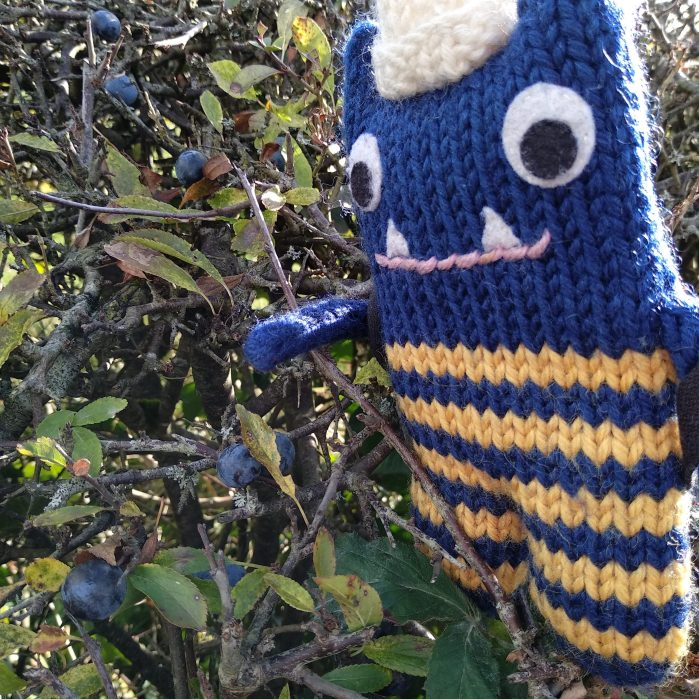 Foraging for Sloes! CrawCrafts Beasties
