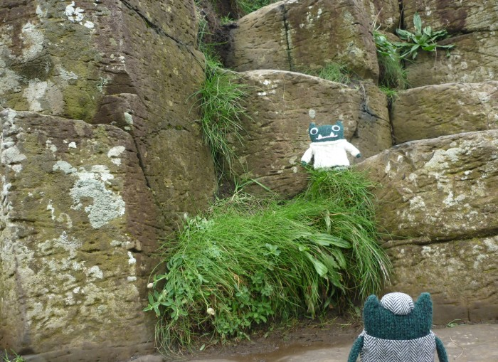 Paddy at the Giant's Causeway - H Crawford/CrawCrafts Beasties