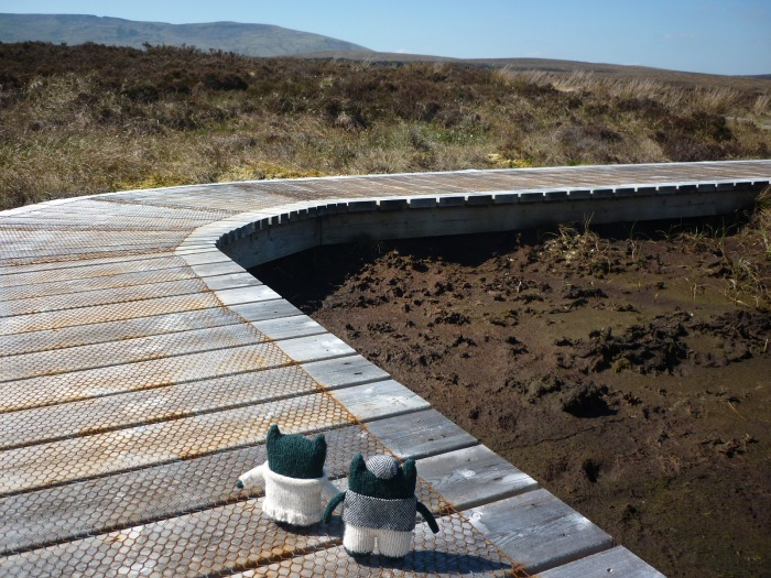 Paddy and Plunket on the Boardwalk at Cuilcagh Mountain - H Crawford/CrawCrafts Beasties