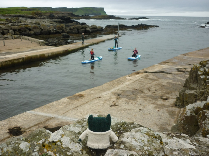 Paddy Watches the Paddleboarders - North Antrim Coast - H Crawford/CrawCrafts Beasties