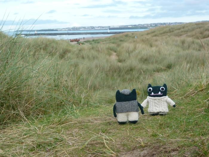 Paddy and Plunkett at Castlerock Beach - H Crawford/CrawCrafts Beasties